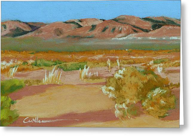 Billy Boy Territory Greeting Card by Diane Cutter