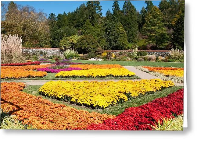 Biltmore Gardens  Greeting Card by Lynn Bauer