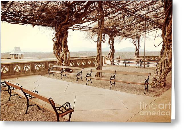 Biltmore Mansion Garden Terrace Piazza Overlooking Blue Ridge Mountains Asheville North Carolina Greeting Card by Kathy Fornal