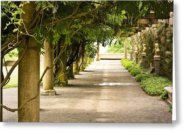 Biltmore Pergola Greeting Card by Tammy Schneider