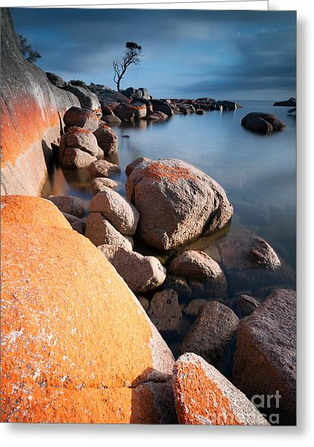 Binalong Bay At Sunrise Greeting Card by Matteo Colombo