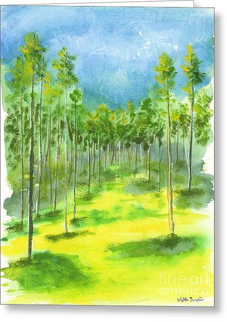 Birch Glen Greeting Card