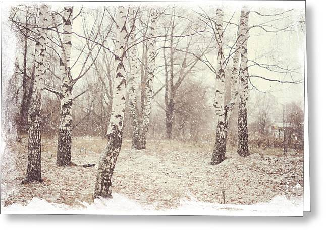 Birch Trees In The Snow. Winter Poems Greeting Card