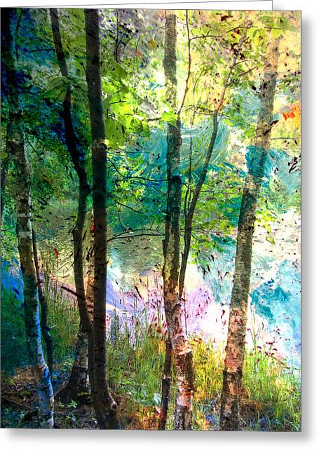 Birch Trees Lake Tall And Abstract Painting Greeting Card