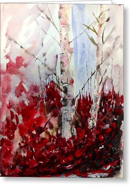 Birch Trees - Red Fall Foliage Greeting Card