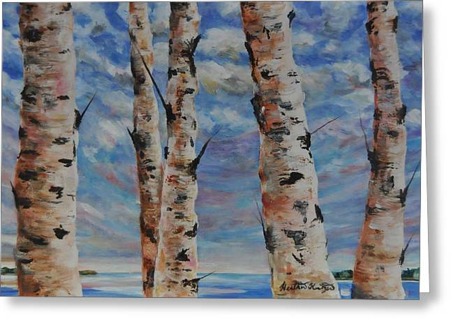 Birches By The Bay Greeting Card by Heather Kertzer