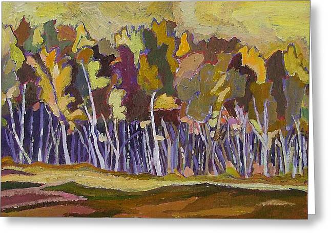 Birches In Autumn Greeting Card by Janet Ashworth
