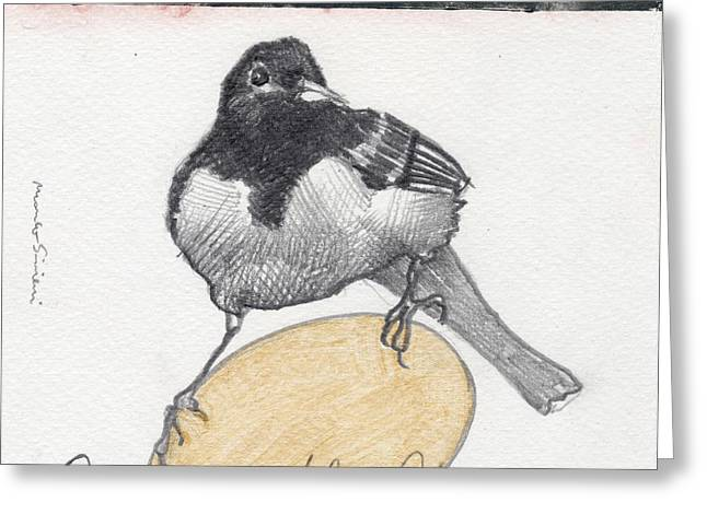 Bird 20 Greeting Card by Marco Sivieri