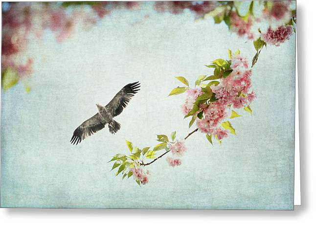 Bird And Pink And Green Flowering Branch On Blue Greeting Card by Brooke T Ryan