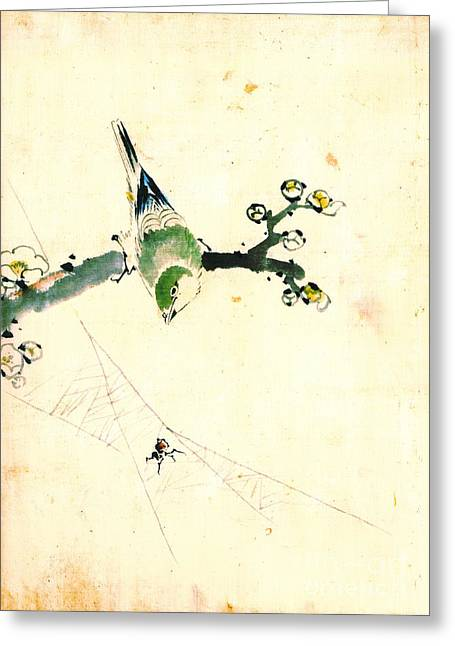 Bird And Spider 1830 Greeting Card by Padre Art