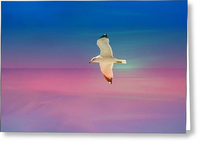Greeting Card featuring the photograph Bird At Sunset by Athala Carole Bruckner