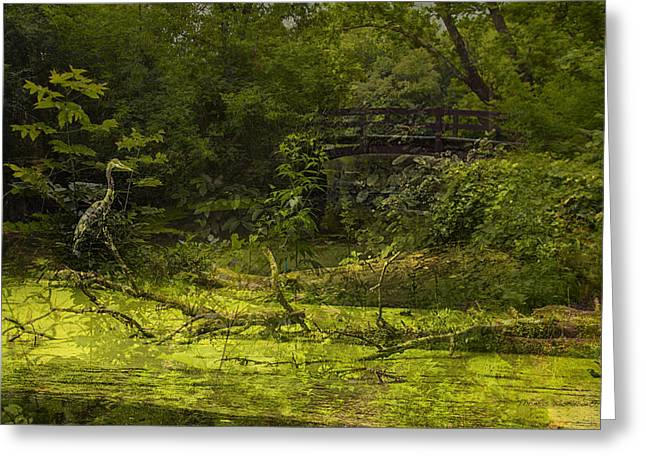 Bird By Bridge In Forest Merged Image Greeting Card by Thomas Woolworth