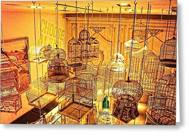 Bird Cages Greeting Card by Susan Stone