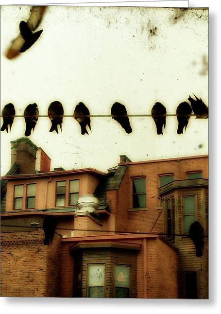 Bird Cityscape Greeting Card