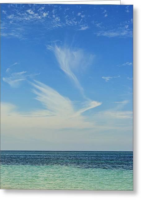 Bird Cloud Greeting Card