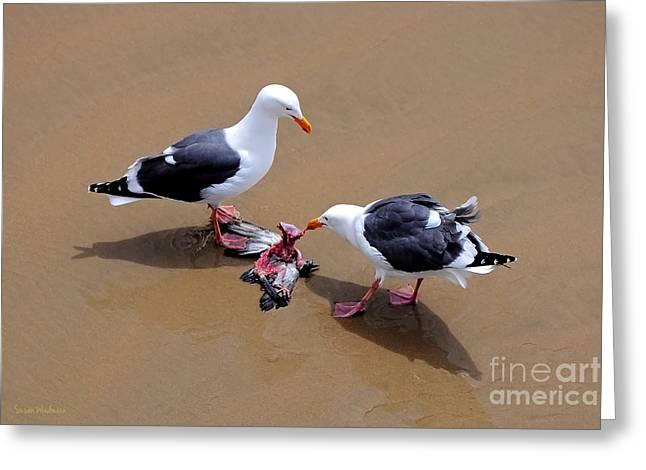 Bird Eats Bird Greeting Card