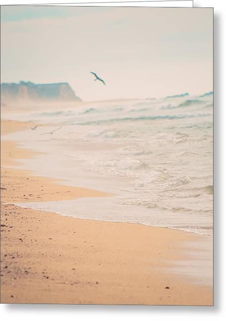 Bird Flying On Beach Horizon Greeting Card