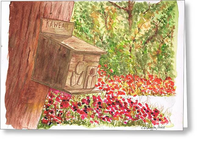 Acuarelas Greeting Cards - Bird home in Kaweah - California Greeting Card by Carlos G Groppa
