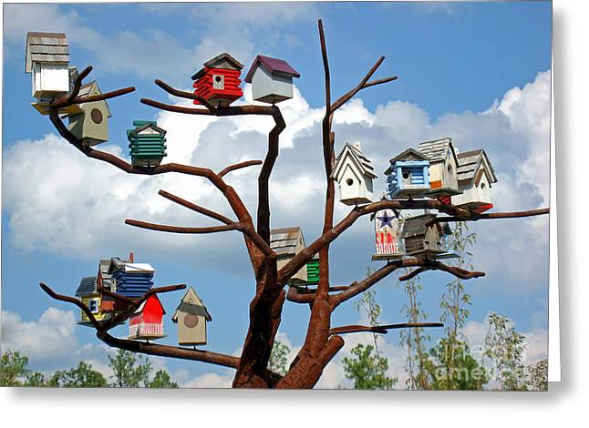 Greeting Card featuring the photograph Bird House Village by Sue Melvin
