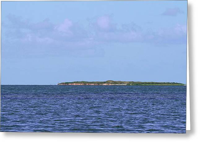 Bird Island In Core Sound Greeting Card by Cathy Lindsey