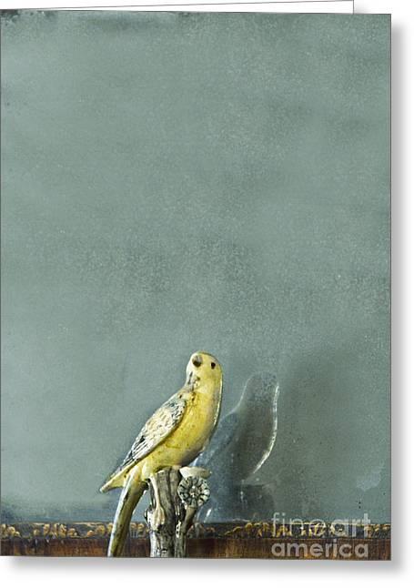 Bird Greeting Card by Margie Hurwich
