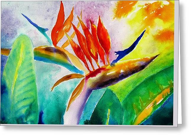 Bird Of Paradise Greeting Card by Carlin Blahnik
