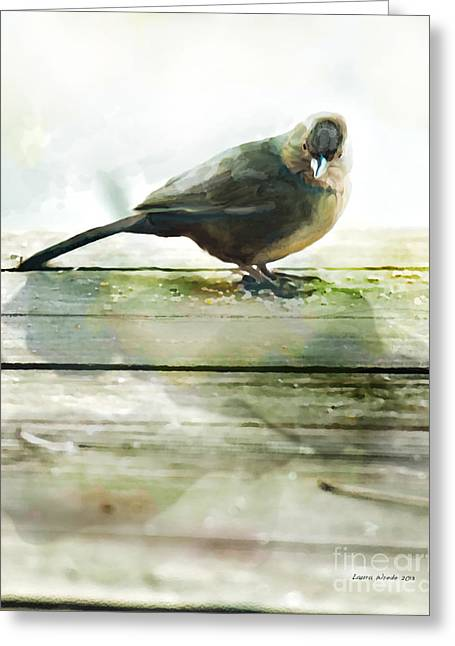 Bird On The Deck Greeting Card