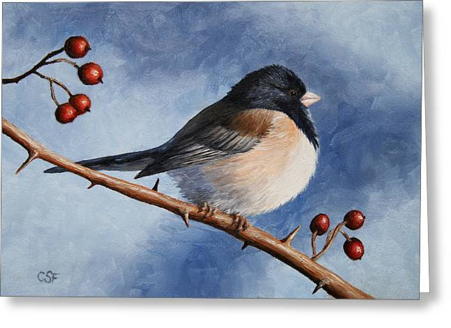 Bird Painting - Dark-eyed Junco Greeting Card by Crista Forest