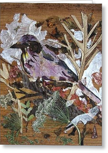 Bird Scubjoy Greeting Card