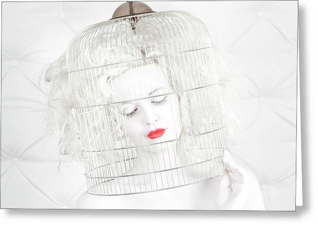 Birdcage Love Greeting Card