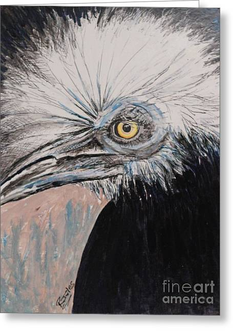 Birdeye Crown Horn Bill Greeting Card