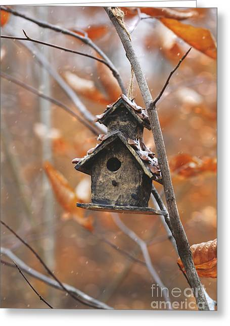 Greeting Card featuring the photograph Birdhouse Hanging On Branch With Leaves by Sandra Cunningham
