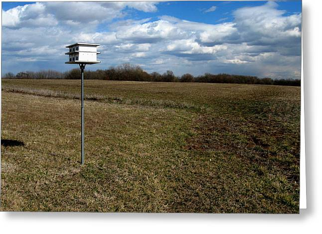 Birdhouse In Field Greeting Card