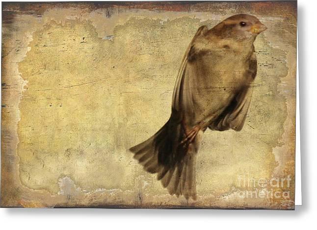 Birdness 2 Greeting Card