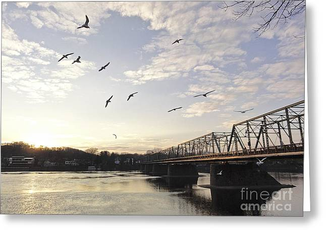 Birds And Bridges Greeting Card