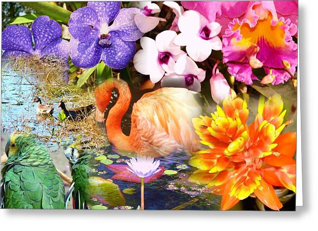 Birds And Flowers Greeting Card by Van Ness