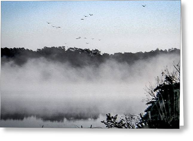 Birds Fly Above The Steamy Lake Greeting Card