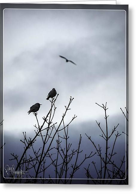 Birds For Breakfast Greeting Card by Glenn Feron