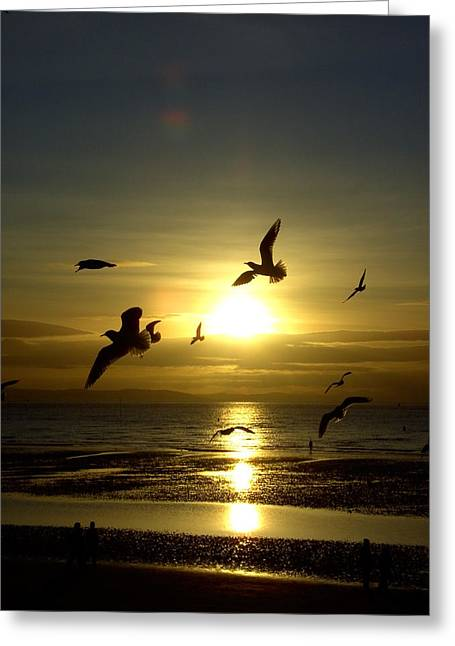 Birds Gathering At Sunset Greeting Card