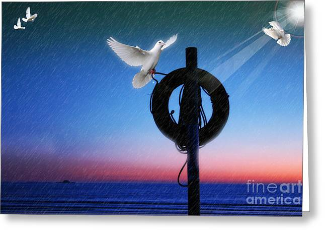 Birds Gathering  Greeting Card by Jo Collins