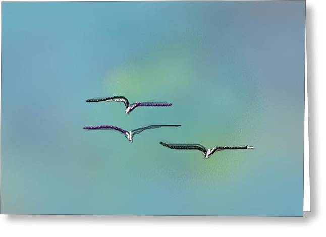 Birds In Flight Greeting Card by Greg Stew