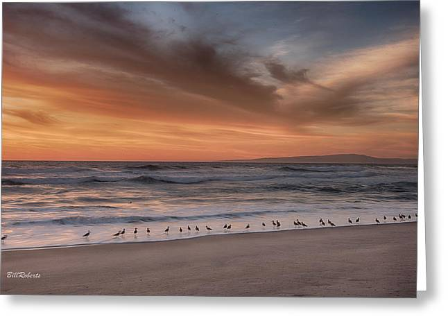 Birds In The Surf Greeting Card by Bill Roberts