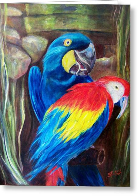 Bird's Of A Feather, Macaws Greeting Card