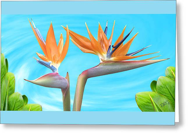 Birds Of Paradise. Couple Greeting Card by Ben and Raisa Gertsberg
