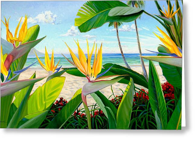Birds Of Paradise Greeting Card by Steve Simon