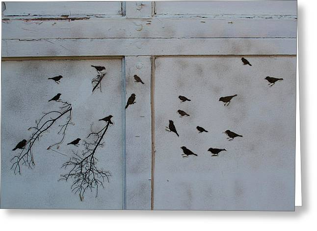 Birds On The Garage Greeting Card