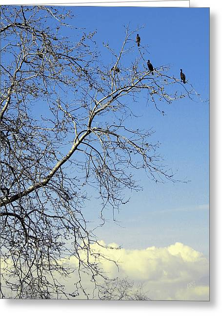 Birds On Tree Greeting Card by Ben and Raisa Gertsberg