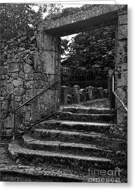 Bishop's Palace Gardens Bw Greeting Card by RicardMN Photography