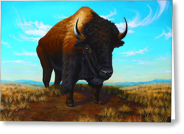 Bison On The Knoll Greeting Card by Clay Hibbard