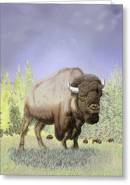 Bison On The Range Greeting Card